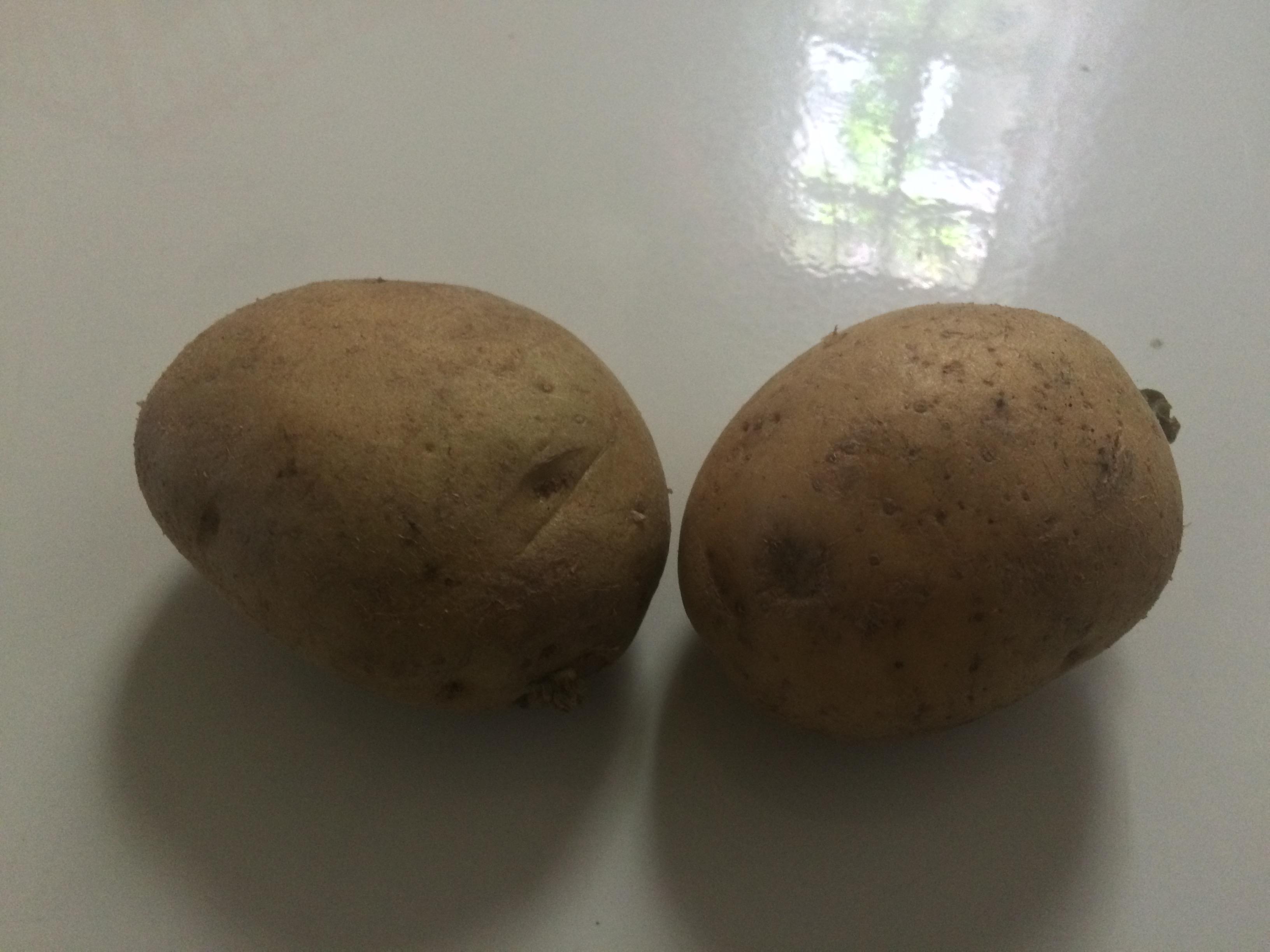 Gambar-kentang-si-bulat-coklat